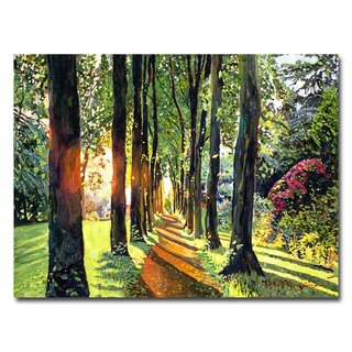 David Lloyd Glover 'Forest of Enchantment' Canvas Art