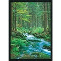 Forest Creek' Gel-Coated Framed Art Print