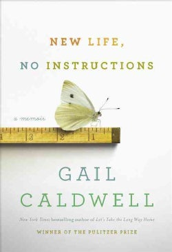 New Life, No Instructions: A Memoir (Hardcover)