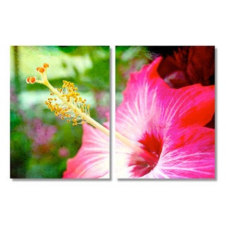 Alexis Bueno 'Hibiscus' Canvas Wall Art 2-piece Set