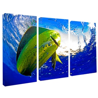 Chris Doherty 'Mahi' Canvas Art 3-piece Set