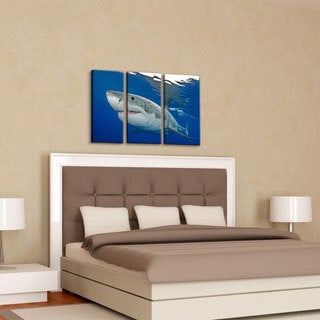 Chris Doherty 'Shark' Canvas Art 3-piece Set