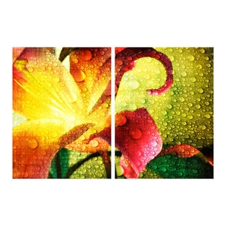 Alexis Bueno 'Tropical Hibiscus' Canvas Wall Art (2 pieces)