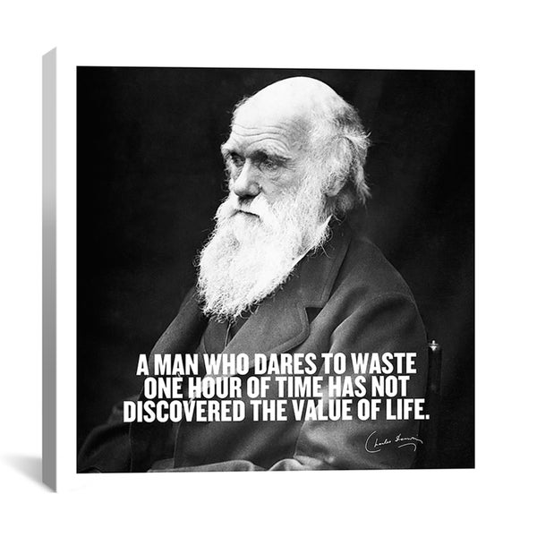 'Charles Darwin Quote' Canvas Art Print