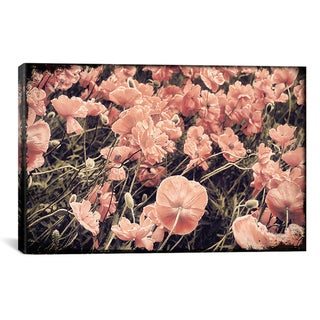 Mindy Sommers 'Ginger Poppies' Canvas Art Print