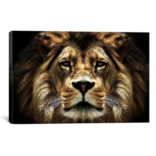 Unknown 'The Lion from SD Smart Collection' Canvas Art Print