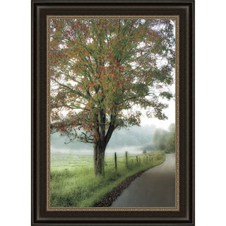 D. Burt 'Almost Autumn' Framed Print