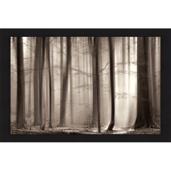 Lars Van de Goor 'The Cloaking Woods' Framed Artwork