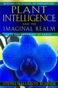 Plant Intelligence and the Imaginal Realm: Beyond the Doors of Perception into the Dreaming of Earth (Paperback)