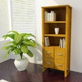 Bookcase Storage Cabinet
