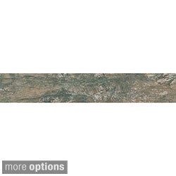 "EmryTile Patina Wood Like Porcelain Tiles (6""x24"")"