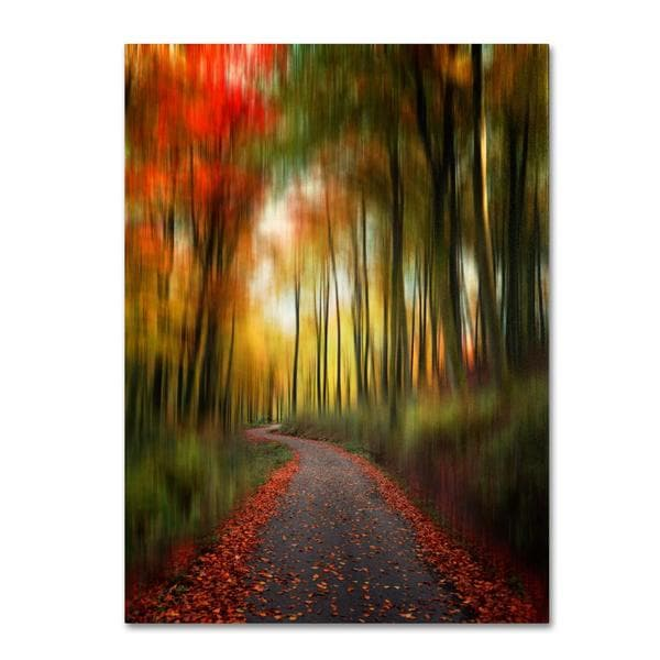 Philippe Sainte-Laudy 'The Lost Path' Canvas Art