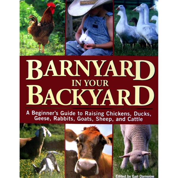 Barnyard in Your Backyard: A Beginner's Guide to Raising Chickens, Ducks, Geese, Rabbits, Goats, Sheep, and Cows (Paperback)