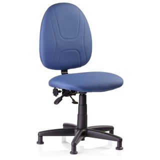 Adjustable Back Task Chair