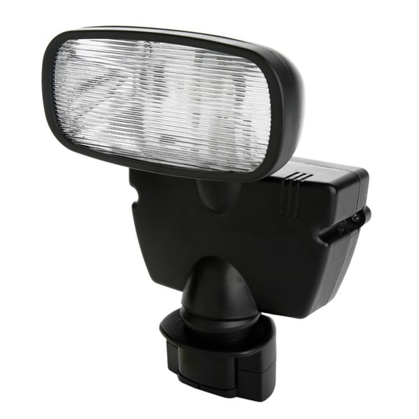 Motion Action 1-light Solar Flood Light