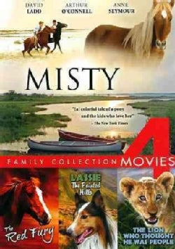 Family Collection: 4 Movies (DVD)