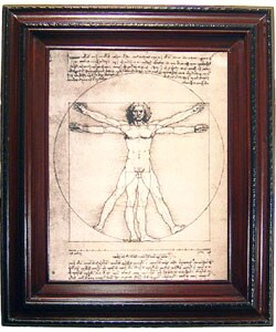Da Vinci - Vitruvian Man Framed Canvas