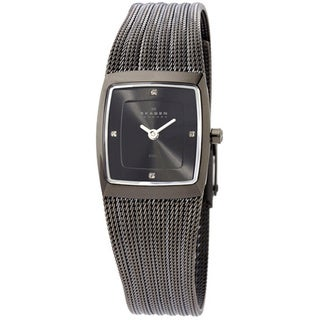 Skagen Women's Classic 380XSMMM1 Grey Titanium Plated Stainless-Steel Quartz Watch with Grey Dial