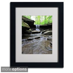 Kurt Shaffer 'Blue Hen Falls in Spring' Framed Matted Art
