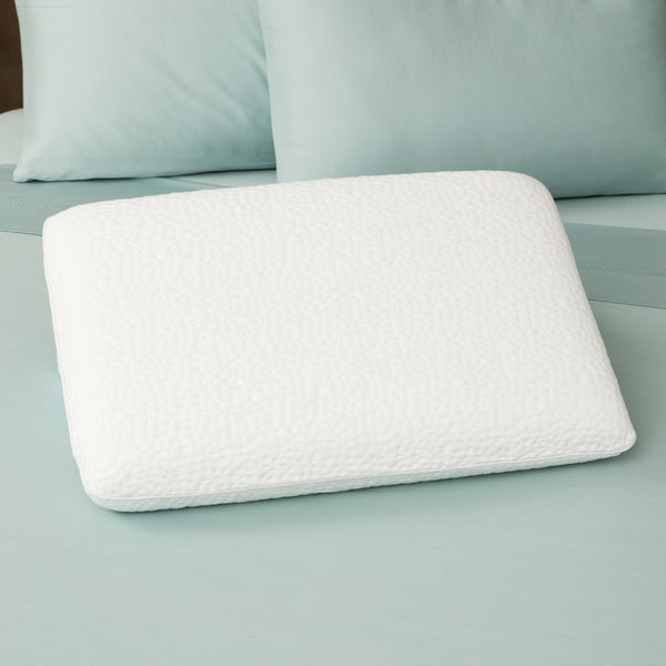 Sharper Image Big Dreams Premium Gel Memory Foam Pillows