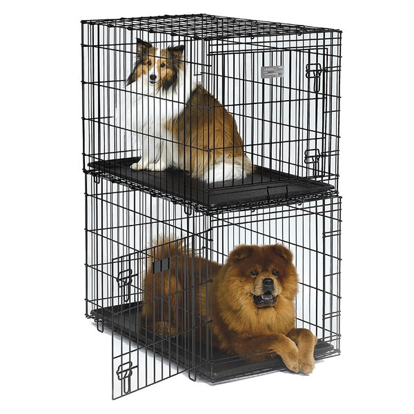 Solutions Stackable Folding Wire Dog Crate 15588464