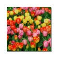 Kurt Shaffer 'Living Bouquet of Tulips' Canvas Art