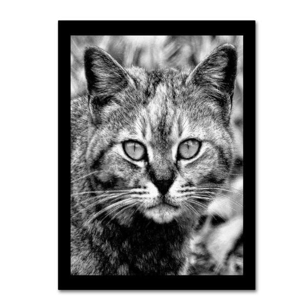 Patty Tuggle 'Black & White Pretty Kitty' Canvas Art
