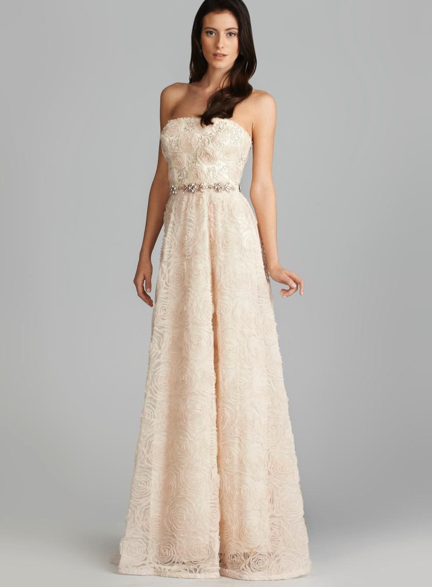 Adrianna Papell Tulle Rosette Beaded Waist Gown 15590889  : Adrianna Papell Tulle Rosette Beaded Waist Gown L15590889 from www.overstock.com size 884 x 1200 jpeg 43kB