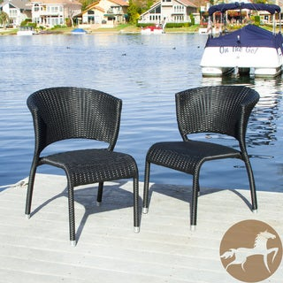 Christopher Knight Home Tampa Black Outdoor Wicker Chairs (Set of 2)