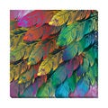 Colorful Feathers Oversized Gallery Wrapped Canvas