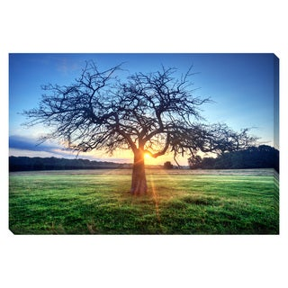 Tree of Light Oversized Gallery Wrapped Canvas
