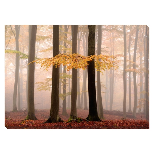 Golden Highlights Oversized Gallery Wrapped Canvas