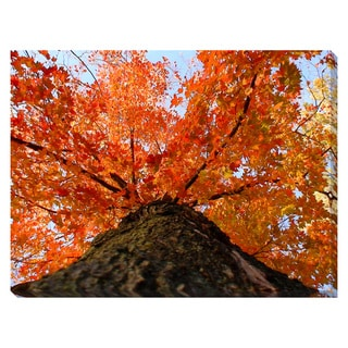 Towering Tree Oversized Gallery Wrapped Canvas