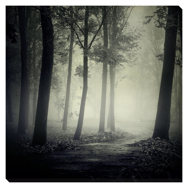 The Path Less Taken I Oversized Gallery Wrapped Canvas