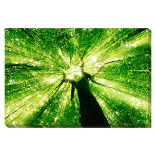 The Forest is Alive Oversized Gallery Wrapped Canvas