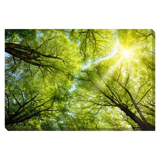 Sun Shines Through Oversized Gallery Wrapped Canvas