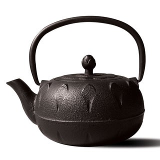 Chubu' Matte Black Cast Iron 18-ounce Teapot