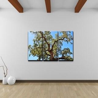 Chris Doherty 'Tree' 3-piece Canvas Wall Art Set