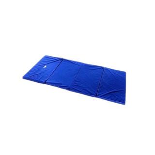 Gofit Aerobic Blue Vinyl Mat
