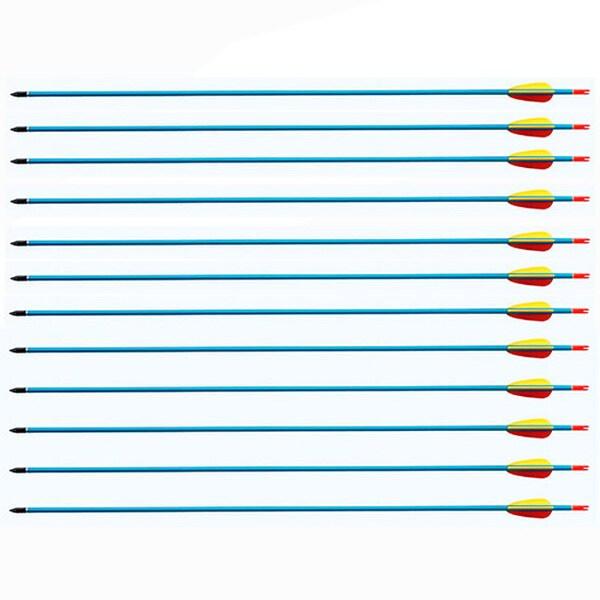 Wizard Archery 30-inch Archery Bow Aluminum Arrows Pack of 12