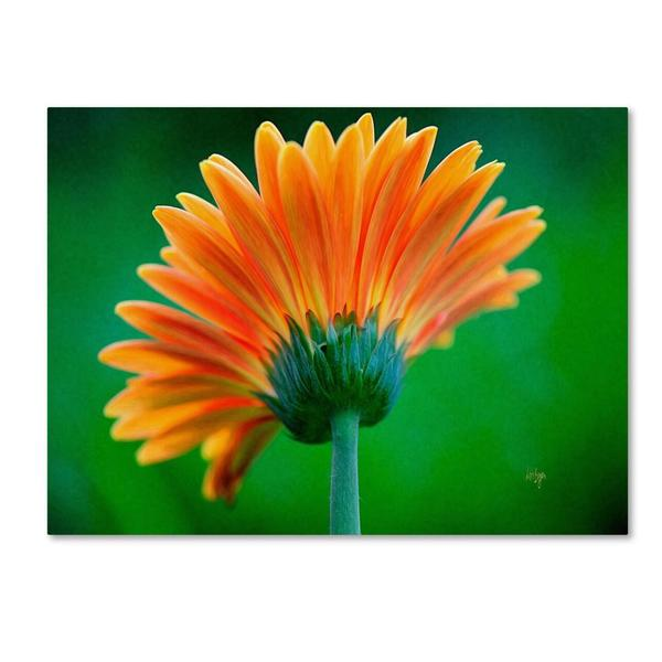 Lois Bryan 'Orange Burst' Canvas Art