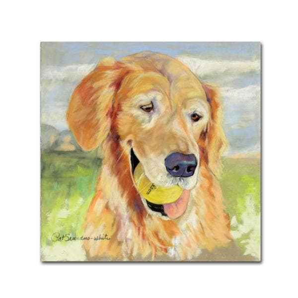 Pat Saunders 'Gus' Canvas Art