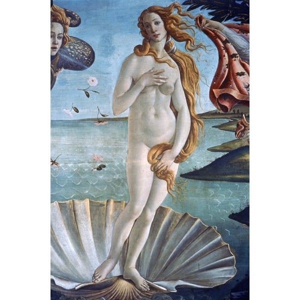'The Birth of Venus' Canvas Print