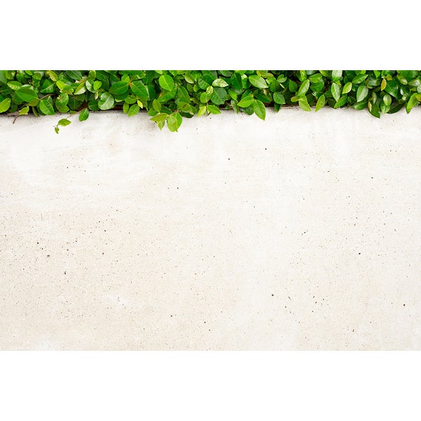 Siri Stafford 'White Wall with Urban Landscaping' Canvas Art Print
