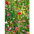 Ideal Decor 'Flower Field' Wall Mural