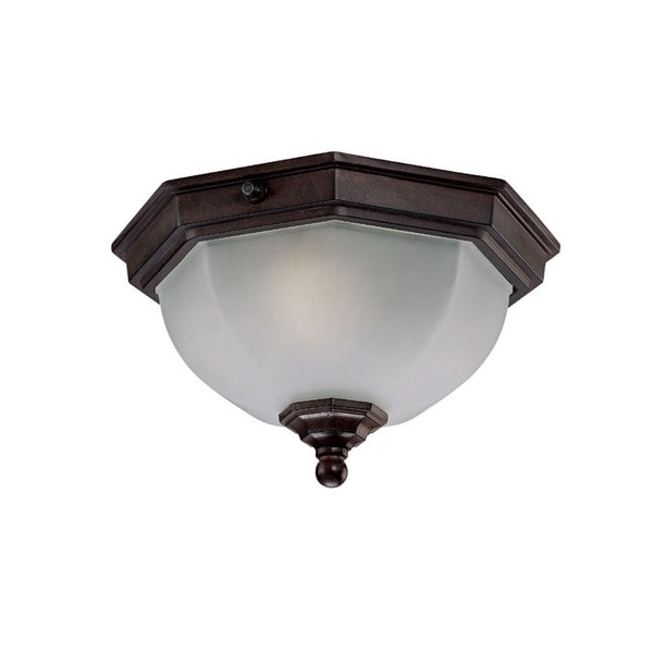 Craftsman Energy Star Collection Ceiling mount 2 light
