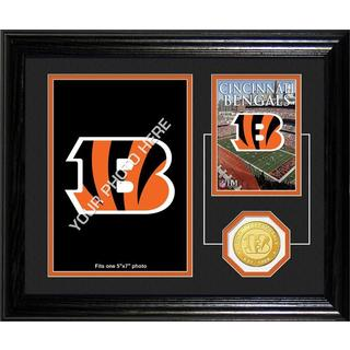 Cincinnati Bengals Framed Memories Desktop Photo