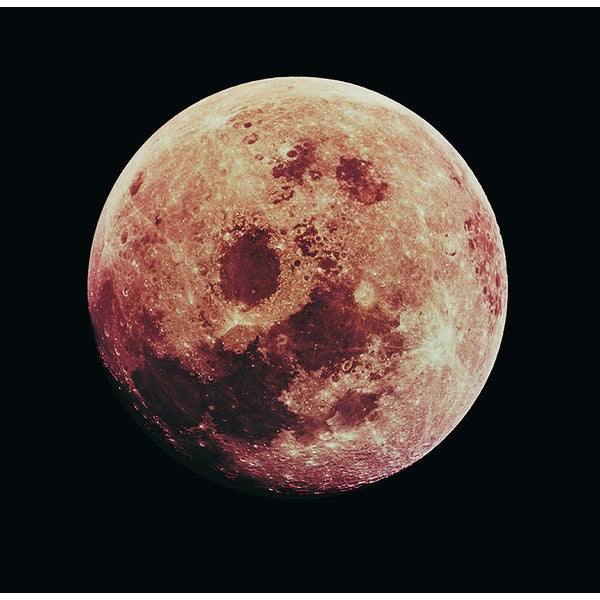 'The Moon in Space' Canvas Wall Art