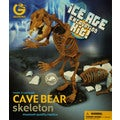 Ice Age Cave Bear Excavation Kit