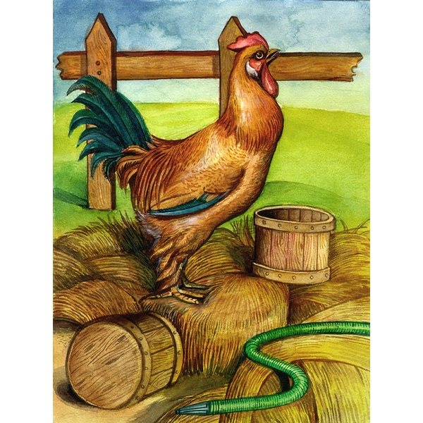 'Rooster on Farm' Modern Canvas Print Wall Art